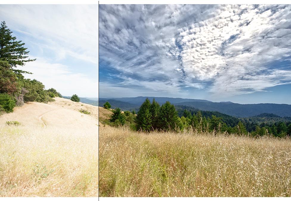 Photo Enhancement on Autopilot